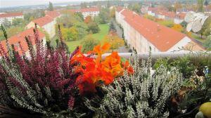 Im Vordergrund ein Blumenkasten, dahinter Häuser und Rasenflächen