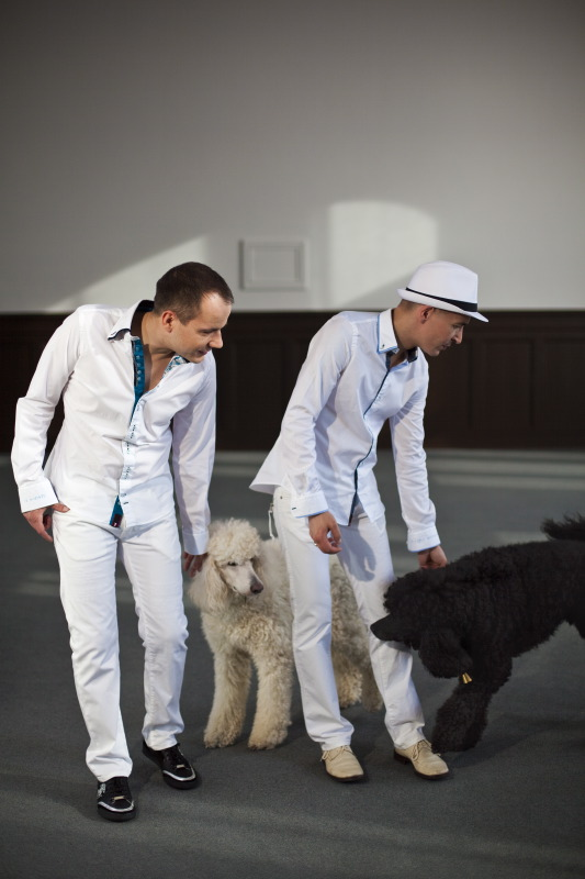 Zwei Männer stehen neben zwei Hunden. Auf dem grauen Boden und an der Wand bilden Sonnenlichtflecken das Fenster nach. Die Männer sind weiß gekleidet. Einer trägt einen Hut, der andere schwarze Turnschuhe. Die restliche Kleidung ist gleich: weißes, 2 Kragenknöpfe offen stehendes Oberhemd mit innenseitig dunklem Rand, weiße Jeans. Beide beugen sich nach links zu den Hunden, einem weißen und einem schwarzen Königspudel, die ohne Leine und Halsband sind. (Niki Matita)