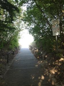 Ein Durchgang durch die Dünen