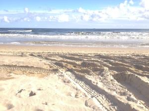 Der blaue Himmel, darunter das blaue Meer, darunter der gelbe Strand, von Autospuren zerfurcht