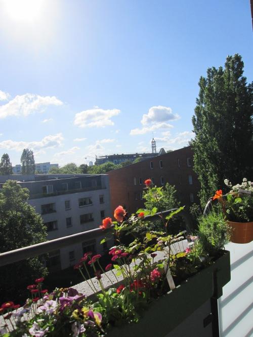 begrünte Balkonbrüstung, gegenüber ein Häuserblock und hellblauer Himmel