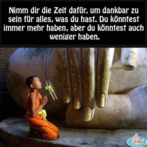 betender kleiner buddhistischer mönch